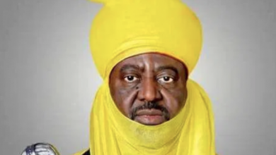 Photo of New Emir of Kano: My Late Father's Wishes Have Come to Pass